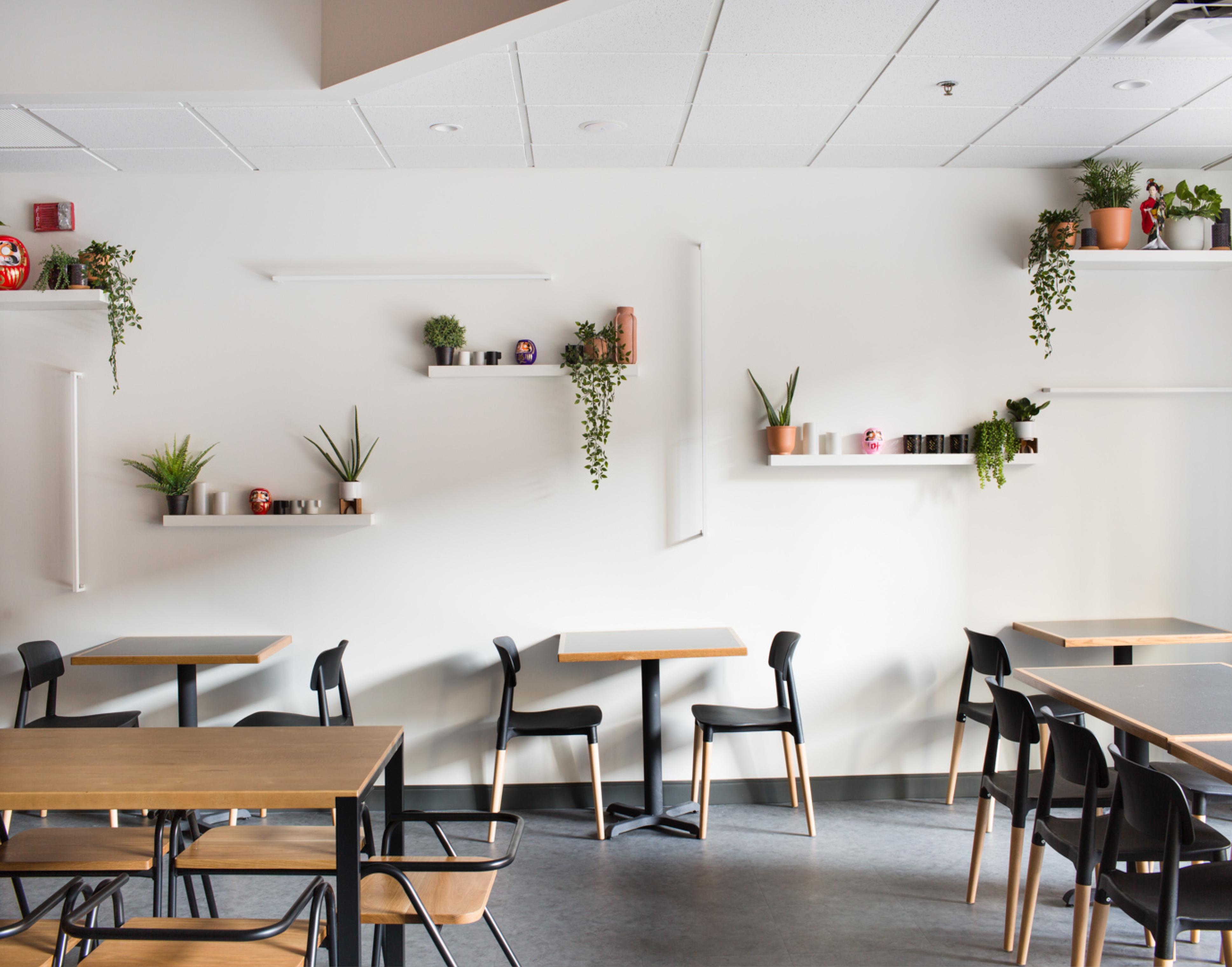 Hibachi Daruma interior design