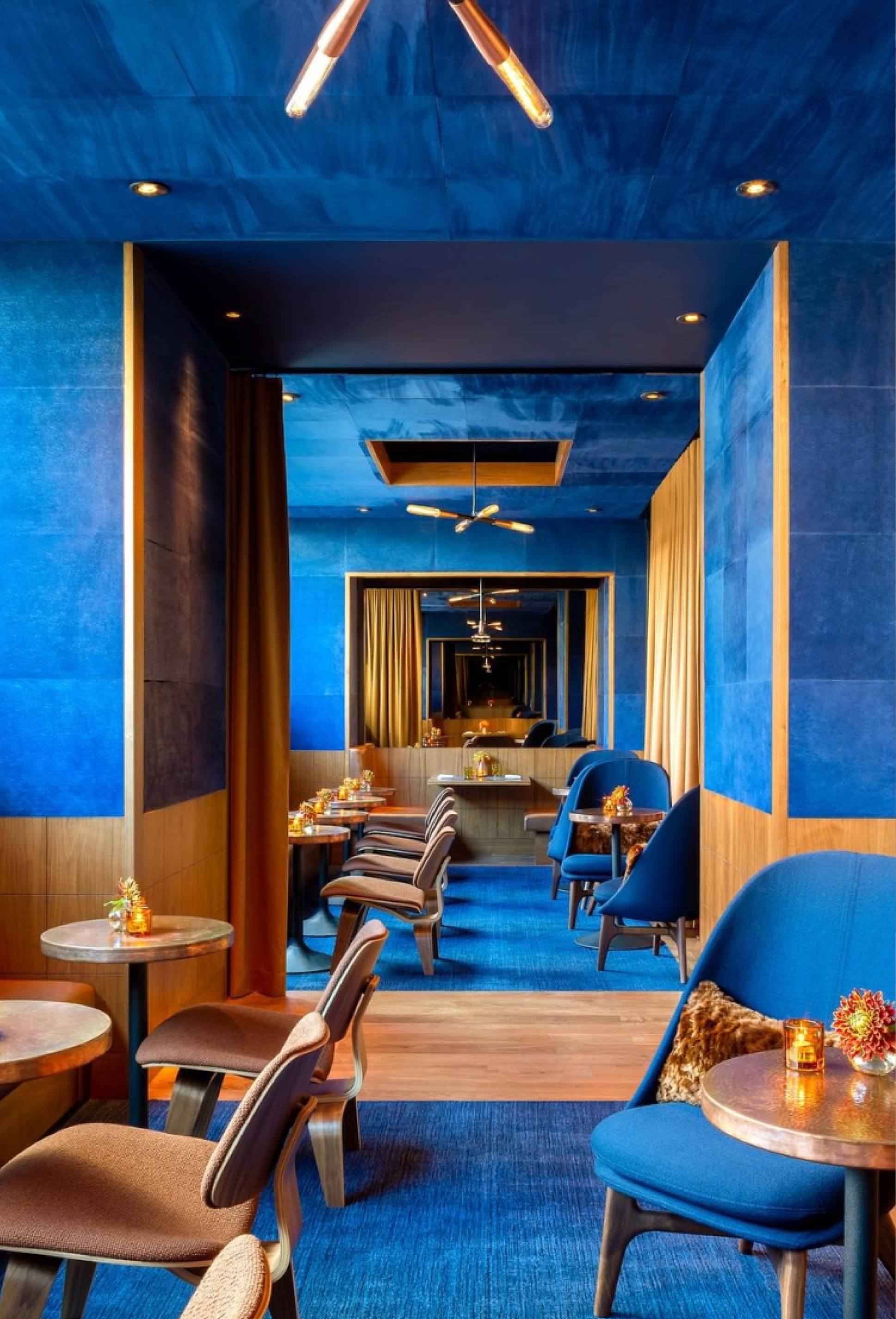 royal blue restaurant design trends