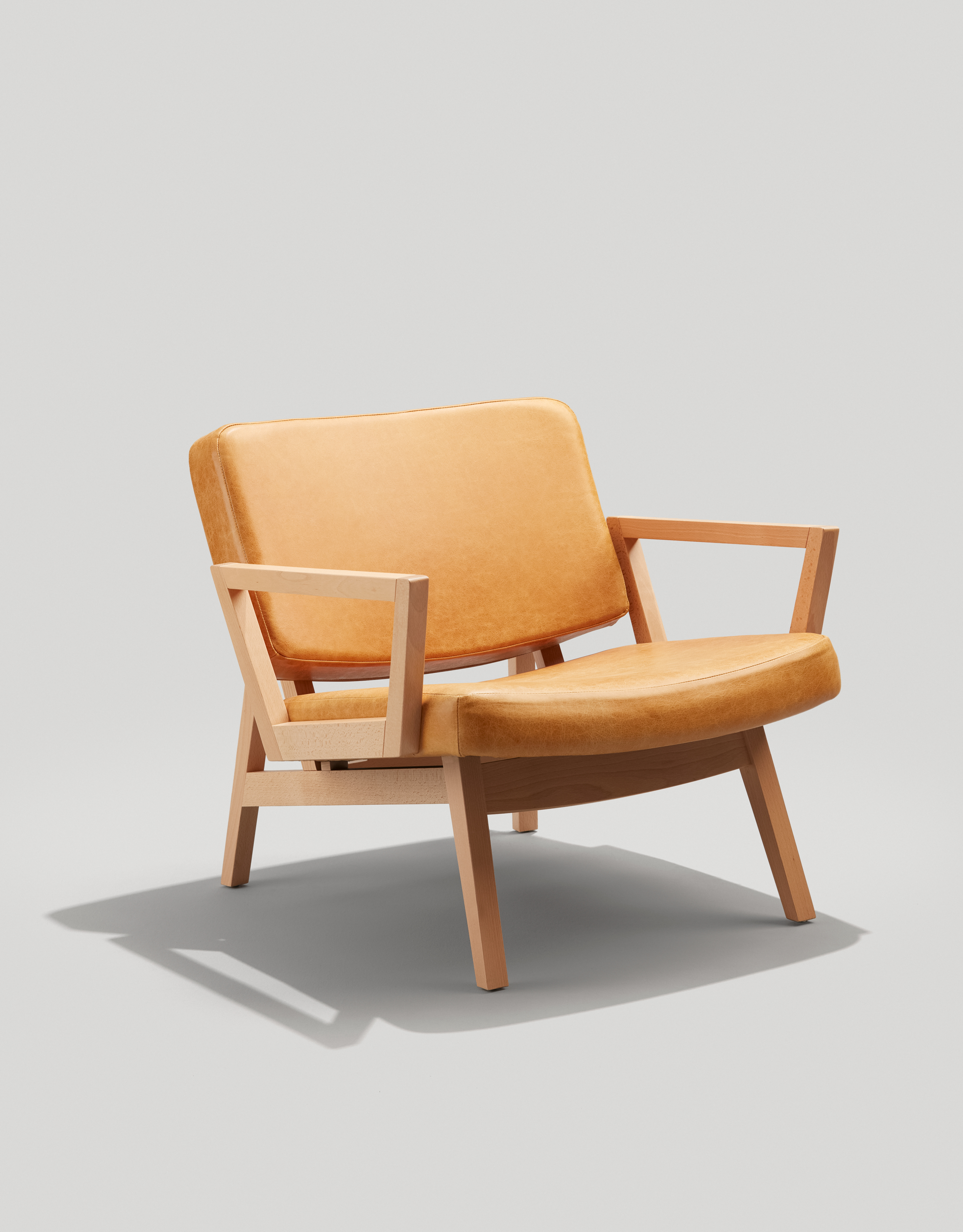 Andy Lounge mid century modern lounge chair